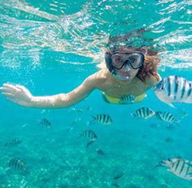 Snorkeling à Cabo Pulmo