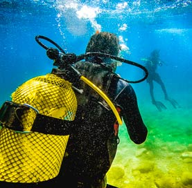 Los Cabos Resort offering Scuba Diving Package