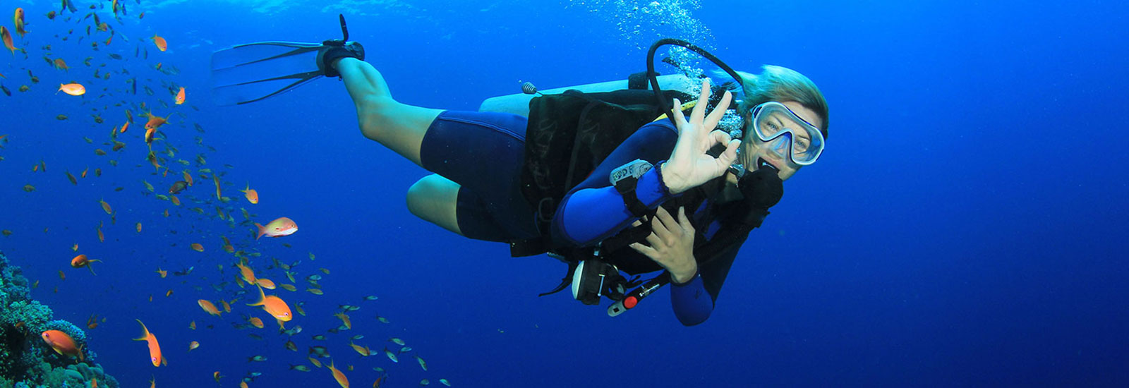 Have a Snorkeling in Los Arcos of Cabo San Lucas
