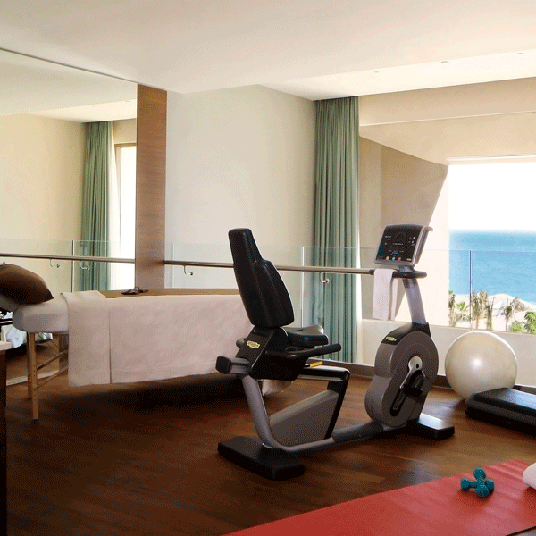 Wellness Suite Los Cabos